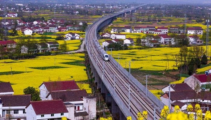 西成高铁8分钟一趟 带您畅游中国最美油菜花海